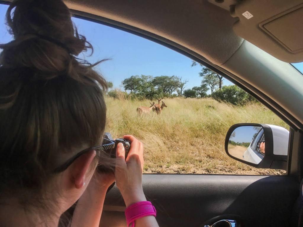 autotour-afrique-du-sud
