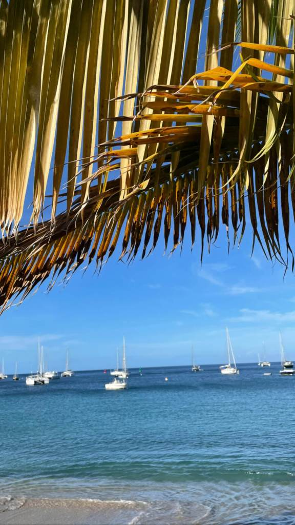 Baies de Deshaies - Guadeloupe