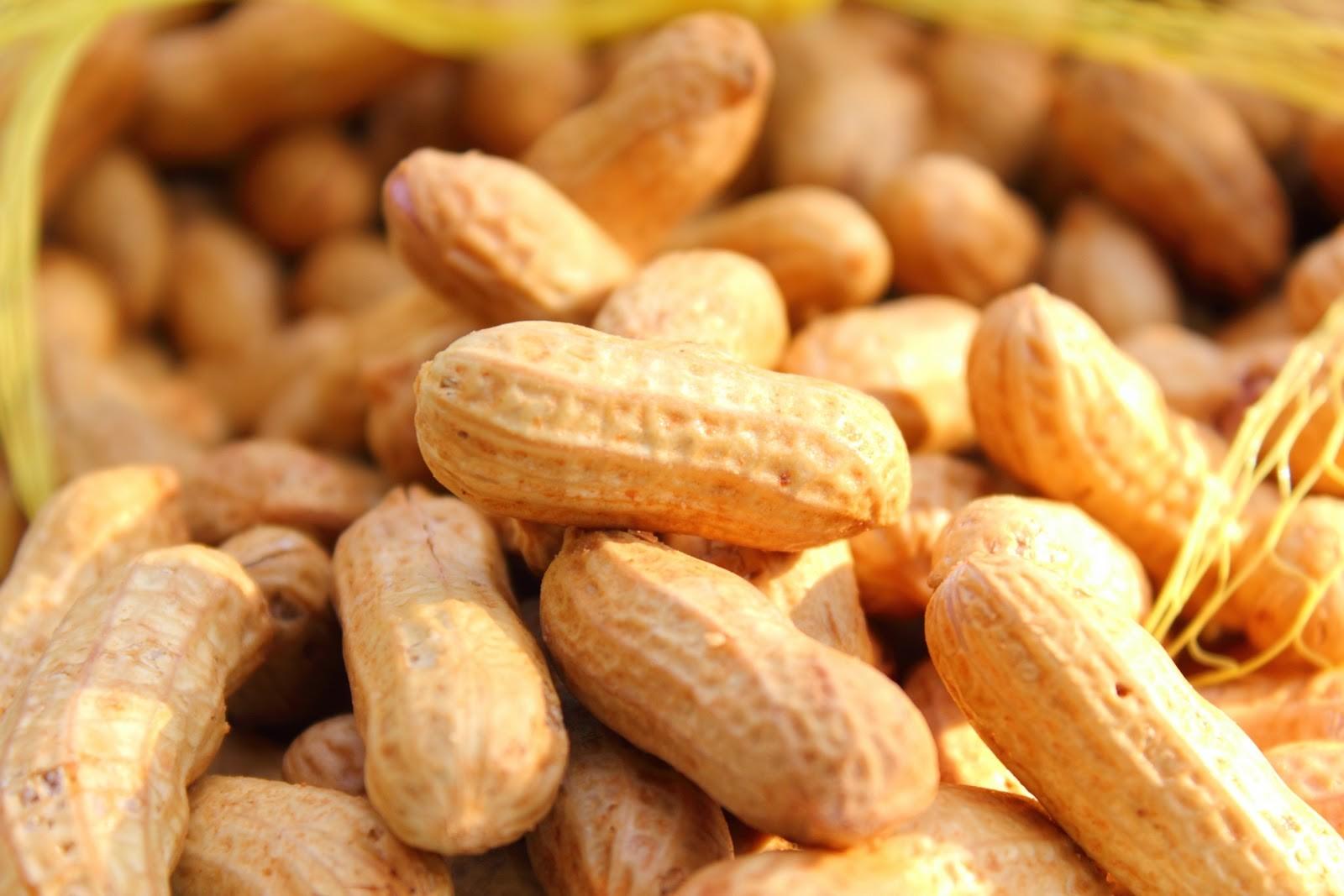 Voyage et allergie alimentaire : l'arachide et moi