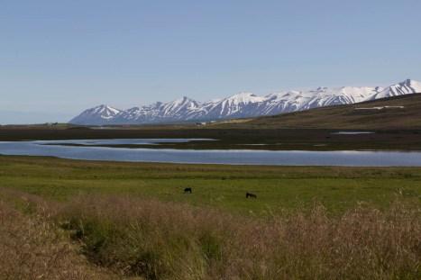 201407 - Islande - 0158