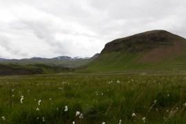 201407 - Islande - 0255