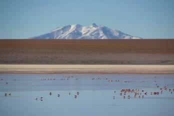 201411 - Bolivie - 0581