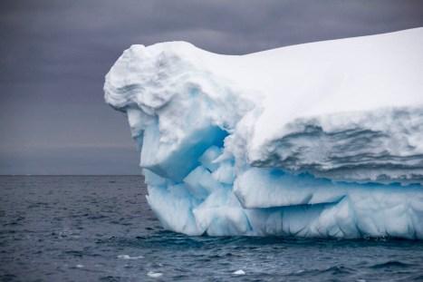 201412 - Antarctique - 0692