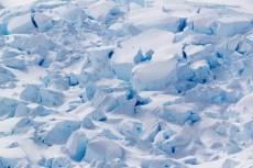 201412 - Antarctique - 1164
