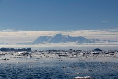 201412 - Antarctique - 1218