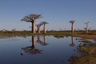 201505 - Madagascar - 0230