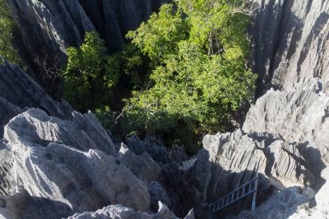 201505 - Madagascar - 0387