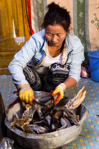 Une femme (MG) - Gobi, MONGOLIE
