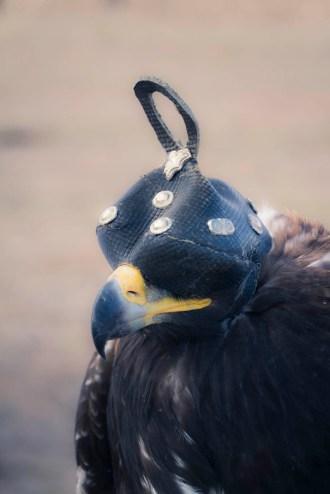 201509 - Mongolie - 0588