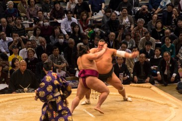 201511 - Japon - 0498