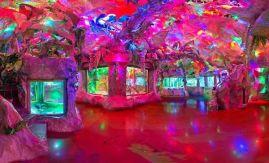 Евпаторийский аквариум внутри