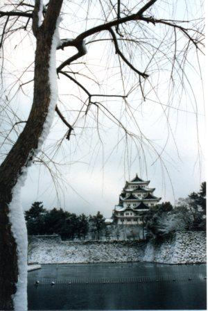 The castle at Nagoya, where Rhonda lived