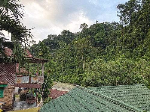 L'indonésie hors des sentiers battus : Bukit Lawang