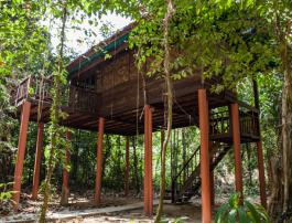 Dormir dans un écolodge au Parc National Khao Sok