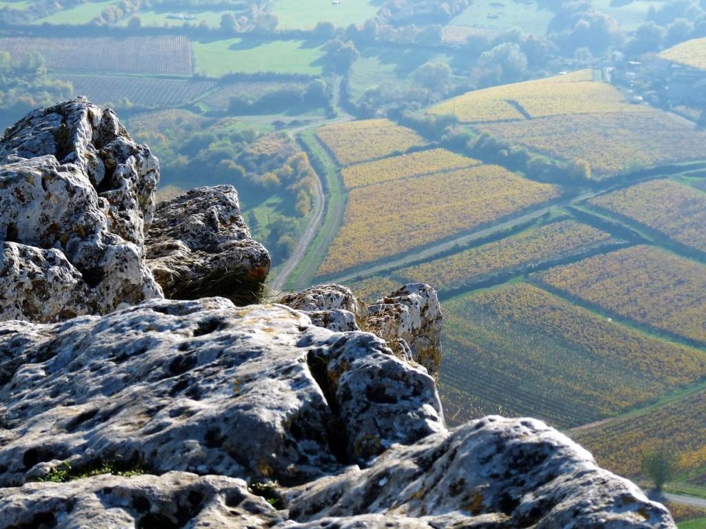 la Roche de Solutré - les vignes de Pouilly