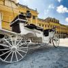Grand tour d'Autriche : Salzbourg, Vienne et Graz