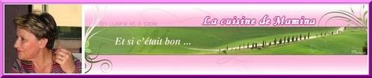 Cliquez pour consulter le site de Mamina : http://www.mamina.fr/