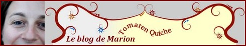 Cliquez sur la bannière pour découvrir le blog http://marionion.blogspot.com/