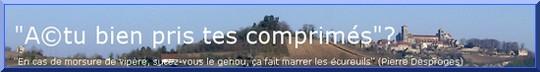 Cliquez sur la bannière pour découvrir le blog Le Chat