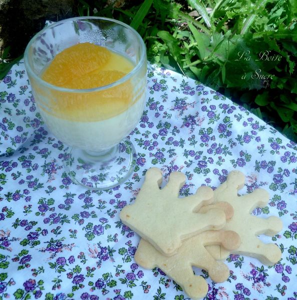 Pana cotta citron orange 2