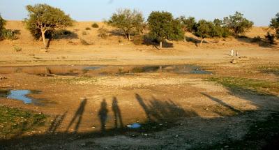 Jaisalmer, la dorée : les temples Jains et le Thar Heritage Museum 30
