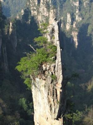 Zhangjiajie, beauté de karsts et de verdures 16