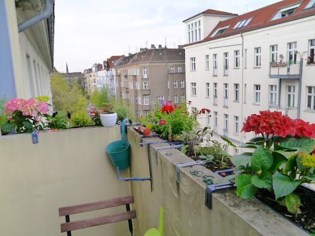Vivre à Berlin ; les aléas d'avril 3