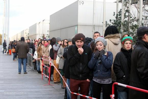 Expositions éphémères et cultures alternatives à Paris en 2013 49