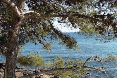 paysage-que-jaime.1282473304.jpg