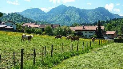 De Eschenlohe à l'Osterfeuerspitze ; balade bucolique en Bavière (Randonnée Allemagne) 42
