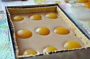 entremet choco abricot 1