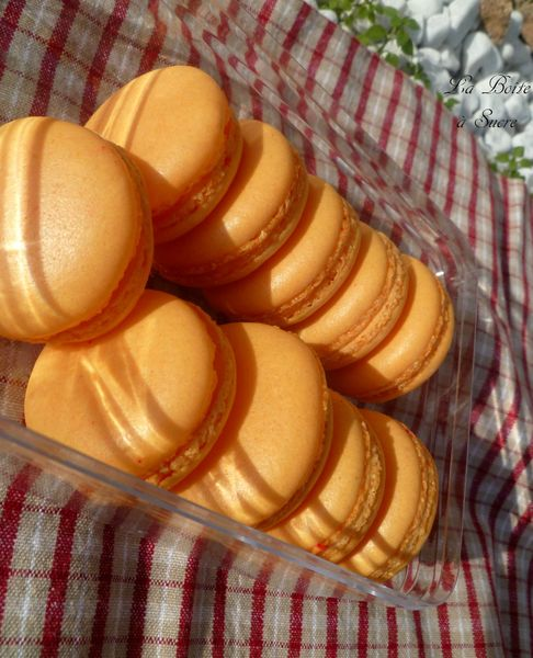 Macarons passion 2