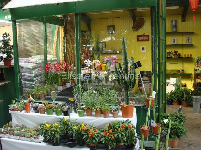 Shopping à Paris : la tradition des marchés de Paris 36