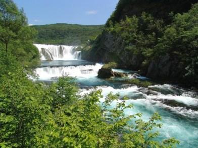 riviere trebizat kravice