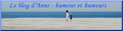 Cliquez sur la bannière pour accéder au blog...