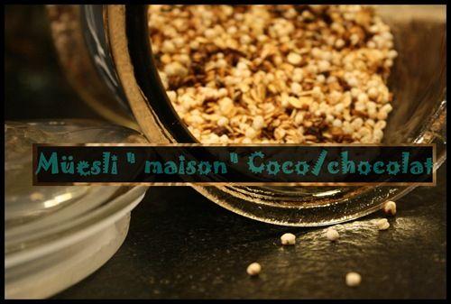 Muesli granola chocolat coco