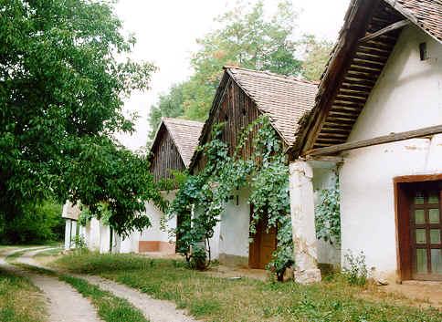 Baranjski bećarac : la fête des célibataires de Draž ; tout le folklore de la Slavonie 3