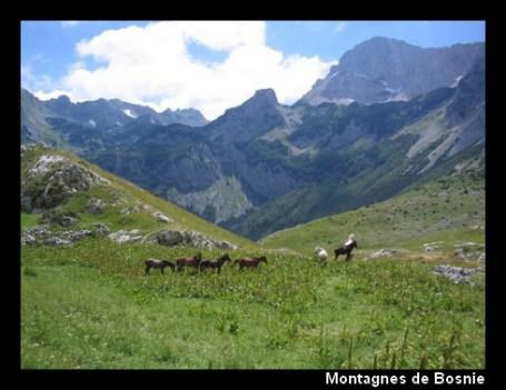 montagne bosna