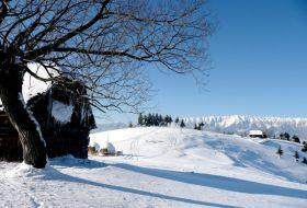 L'hiver et les fêtes de fin d'année à Bran en Transylvanie 2