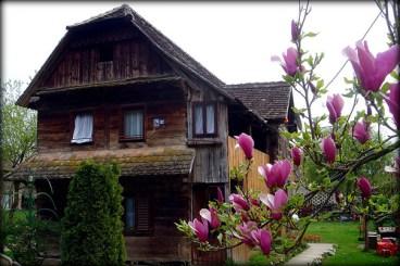 Cigoc maison traditionnelle