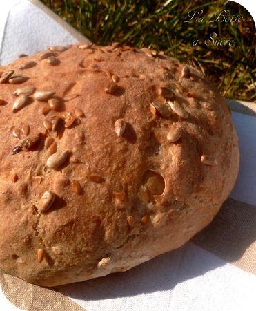 petit pain epeautre dinkelbrotchen