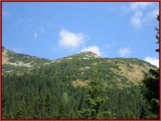 Parc national retezat montagne