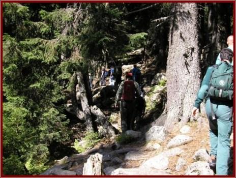 parc national retezat randonnee roumanie