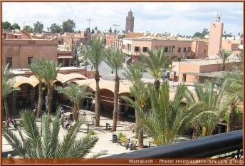 marrakech ville palmiers