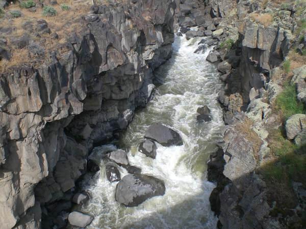 Malad River torrents