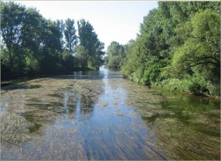 Danube en allemagne