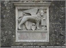 Kotor lion de saint marc