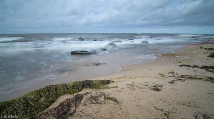 Ile Hiiumaa Mer baltique en Estonie