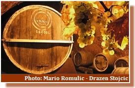 saint martin vins croates
