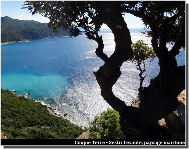 cinque terre sestri levante paysage et mer